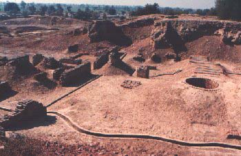 Harappa Excavation Site